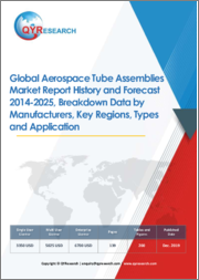 Global Aerospace Tube Assemblies Market Report History and Forecast 2014-2025, Breakdown Data by Manufacturers, Key Regions, Types and Application