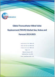 Global Transcatheter Mitral Valve Replacement (TMVR) Market Size, Status and Forecast 2019-2025