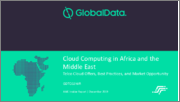 Cloud Computing in Africa and the Middle East: Telco Cloud Offers, Best Practices and Market Opportunity