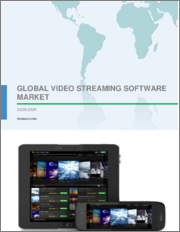 Video Streaming Software Market by Streaming Type and Geography - Forecast and Analysis 2020-2024