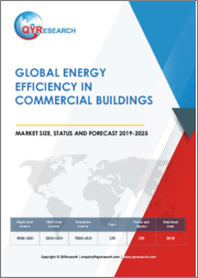 Global Energy Efficiency in Commercial Buildings Market Size, Status and Forecast 2019-2025