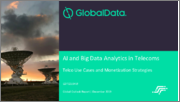 AI and Big Data Analytics in Telecoms: Telco Use Cases and Monetization Strategies