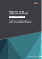 Absorbent Glass Mat (AGM) Battery Market by Voltage (2-4 Volts, 6-8 Volts, 12 Volts & Above), Type (Stationary, Motive), End User (OEM, Aftermarket), Application (Automotive, UPS, Energy storage, Industrial), and Geography - Global Forecast to 2025