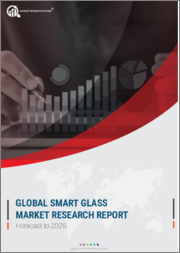 Global Smart Glass Market Research Report-Forecast till 2025