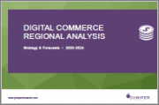 Digital Commerce Regional Analysis: Key Trends, Segment Analysis & Regional Forecasts 2020-2024