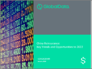 China Reinsurance: Key trends and Opportunities to 2022