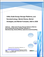 Utility Scale Energy Storage Platforms and Nanotechnology: Market Shares, Strategies and Forecasts, Worldwide 2020 to 2026