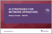 AI Strategies for Network Operators: Key Use Cases & Monetisation Models 2020-2024