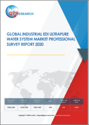 Global Industrial EDI Ultrapure Water System Market Professional Survey Report 2020