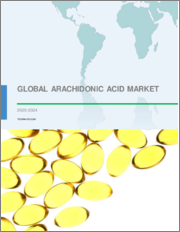 Arachidonic Acid Market by Application and Geography - Forecast and Analysis 2020-2024