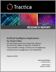 Artificial Intelligence Applications for Smart Cities: 23 Use Cases across Six Smart City Sectors: Governance, Safety & Security, Mobility & Transportation, Energy & Resource Management, Infrastructure Management, and Healthcare