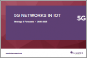 5G Networks in IoT: Sector Analysis & Impact Assessment 2020-2025