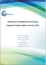 Global Enzyme Modified Dairy and Cheese Ingredients Market Insights, Forecast to 2025