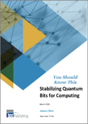 Stabilizing Quantum Bits for Computing