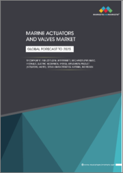 Marine Actuators and Valves Market by Component, End User (OEM, Aftermarket), Mechanism (Pneumatic, Hydraulic, Electric, Mechanical, Hybrid), Application, Product (Actuators, Valves), Design Characteristics, Material, Region - Global Forecast to 2025