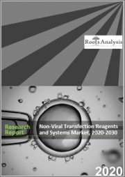 Non-Viral Transfection Reagents and Systems Market, 2020-2030