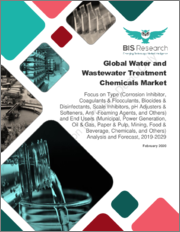 Global Water and Wastewater Treatment Chemicals Market: Focus on Type and End Users - Analysis and Forecast, 2019-2029