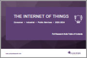 The Internet of Things (IoT): Consumer, Industrial & Public Services 2020-2024