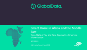 Smart Home in Africa and the Middle East: Telco State of Play and New Approaches to Service Monetization