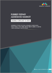 Rubber Repair Adhesives Market by Process (Hot Bond, Cold Bond), Application (Conveyor Belts, Tanks & Vessels, Pipes & Fittings, and Others), End-use Industry (Mining & Quarrying, Cement & Aggregate, Steel and Others), Region - Global Forecast to 2025