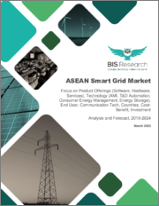 ASEAN Smart Grid Market: Focus on Product Offerings, Technology (AMI, T&D Automation, Consumer Energy Management, Energy Storage), End User, Communication Tech, Countries, Cost-Benefit, Investment - Analysis and Forecast, 2019-2024