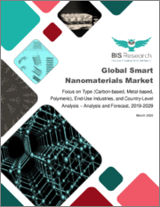 Global Smart Nanomaterials Market: Focus on Type (Carbon-based, Metal-based, Polymeric), End-Use Industries, and Country-Level Analysis - Analysis and Forecast, 2019-2029