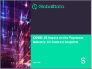 COVID-19 Impact on the Payments Industry: US Forecast Snapshot