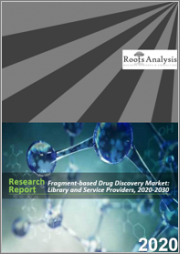 Fragment-based Drug Discovery Market: Library and Service Providers, 2020-2030