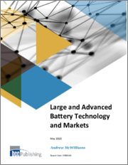 Large and Advanced Battery Technology and Markets