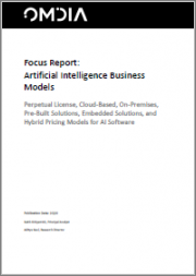 Artificial Intelligence Business Models: Perpetual License, Cloud-Based, On-Premises, Pre-Built Solutions, Embedded Solutions, and Hybrid Pricing Models for AI Software
