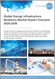 Global Energy Infrastructure Resilience Market Forecast 2020-2030: Forecasts & Analysis by Infrastructure Type, by Power Infrastructure, by Generation Type, Forecasts by Major Developed and Developing Countries, Profiles of Leading Companies