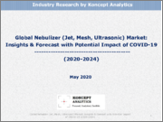 Global Nebulizer (Jet, Mesh, Ultrasonic) Market: Insights & Forecast with Potential Impact of COVID-19 (2020-2024)