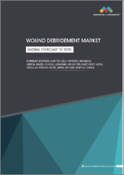 Wound Debridement Market by Product (Enzymatic, Autolytic (Gels, Ointments), Mechanical (Medical Gauzes), Surgical, Ultrasonic), Wound Type (Diabetic Foot Ulcers, Venous Leg, Pressure Ulcers, Burns), End User - Global Forecast to 2025