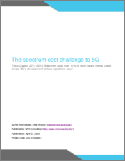 The Spectrum Cost Challenge to 5G: Telco Capex, 2011-2019: Spectrum Adds Over 11% to Telco Capex Needs, Could Hinder 5G's Development Unless Regulators React