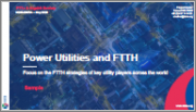 Power Utilities and FTTH: Focus on the FTTH Strategies of Key Utility Players Across the World