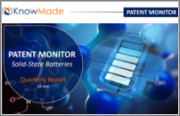 Solid-State Batteries Patent Monitor