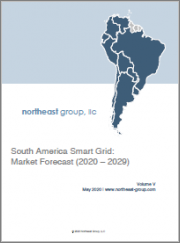 South America Smart Grid: Market Forecast (2020 - 2029)