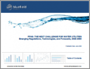 PFAS, The Next Challenge for Water Utilities: Emerging Regulations, Technologies, and Forecasts, 2020-2030