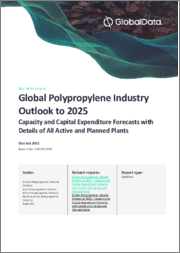 Global Polypropylene Industry Outlook to 2024 - Capacity and Capital Expenditure Forecasts with Details of All Active and Planned Plants