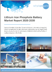 Lithium Iron Phosphate Battery Market Report 2020-2030: Forecasts & Analysis by End User, by Application (Portable, Stationery), including Forecasts by Region, plus Profiles of Leading Companies