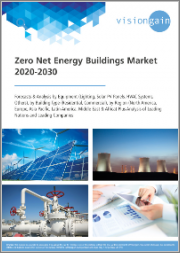 Zero Net Energy Buildings Market 2020-2030: Forecasts & Analysis by Equipment (Lighting, Solar PV Panels, HVAC Systems), by Building Type (Residential, Commercial), by Region, plus Analysis of Leading Nations and Companies