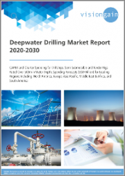 Deepwater Drilling Market Report 2020-2030: Capex and Charter Spending for Drillships, Semi-Submersible and Tender Rigs Rated Over 500m in Water Depth, Spending Forecasts (USD Billion) for Leading Regions