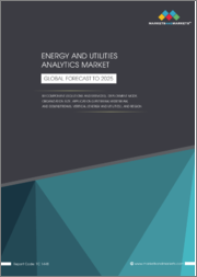 Energy and Utilities Analytics Market by Component (Solutions and Services), Deployment Mode, Organization Size, Application (Upstream, Midstream, and Downstream), Vertical (Energy and Utilities), and Region - Global Forecast to 2025