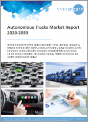 Autonomous Trucks Market Report 2020-2030: Revenue Prospects by Sensor (Radar, Lidar, Image Sensor, Ultrasonic), Hardware & Software, by Type, plus Leading Company Analysis and Regional/Leading National Market Analysis