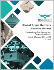 Global Drone Delivery Service Market: Focus on Drone Type, Package Size, Range, and Application - Analysis and Forecast, 2023-2030