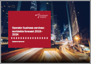 Operator Business Services: Worldwide Forecast 2019-2024