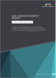 Gas Chromatography Market by Instrument, Accessories and Consumables, End-User, and Region - Global Forecast to 2025