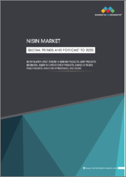 Nisin Market by Application (Meat, Poultry & Seafood Products, Dairy Products, Beverages, Bakery & Confectionery Products, Canned & Frozen Food products, and Other applications) and Region - Global Trends and Forecast to 2025