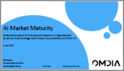 AI Market Maturity: Enterprise Survey of AI End Users and Vendors on Organizational Structure, Goals, Strategy, Data Privacy, Accountability, and COVID-19