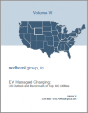 EV Managed Charging: US Outlook and Benchmark of Top 100 Utilities
